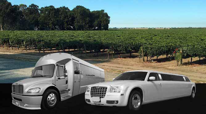 Clarksburg Wine Tours Petaluma