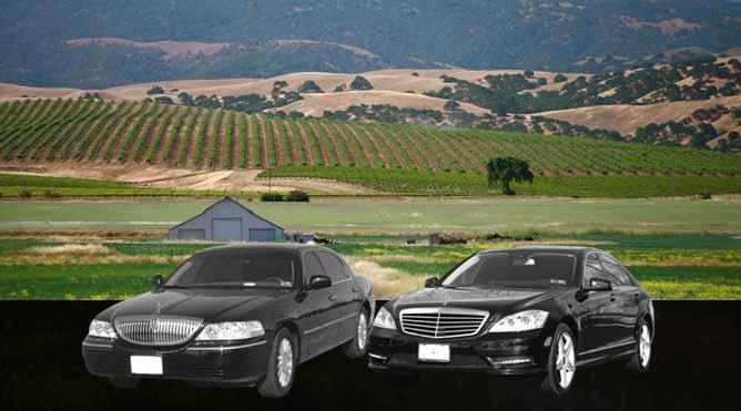 Livermore County Wine Tour from Petaluma